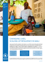 WFP Mali - Changing Lives, Scaling Up Resilience