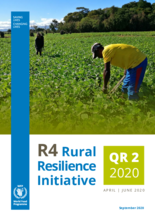 R4 Rural Resilience Quarterly Report - April-June 2020