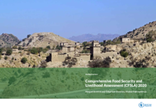 COMPREHENSIVE FOOD SECURITY AND LIVELIHOOD ASSESSMENT (CFSLA)