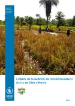 L'étude de faisabilité de l'enrichissement du riz en Côte d'Ivoire