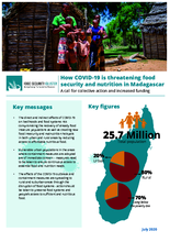 WFP Madagascar - How COVID-19 is threatening food security and nutrition in Madagascar
