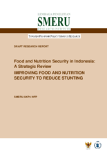 2015 - Food Security and Nutrition Strategic Review - Indonesia
