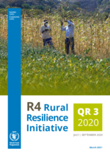 R4 Rural Resilience Initiative Quarterly Report 3: July-September 2020