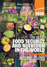 The State of Food Security and Nutrition in the World (SOFI) Report 2020