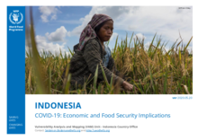 Indonesia - COVID-19  Economic and Food Security Implications