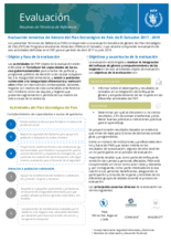 El Salvador, Country Strategic Plan's Gender Related Topics: Evaluation