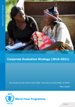 Corporate Evaluation Strategy (2016-2021)