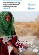 FAO-WFP Early Warning Analysis of Acute Food Insecurity Hotspots
