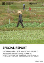 2019 FAO/WFP CROP AND FOOD SECURITY ASSESSMENT MISSION