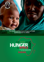 The Cost of Hunger in Africa series