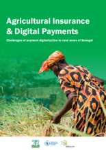 2021- Agricultural Insurance & Digital Payments: Challenges of payment digitalization in rural areas of Senegal