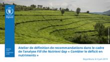 Atelier de définition de recommandations dans le cadre  de l'analyse Fill the Nutrient Gap « Combler le déficit en  nutriments »