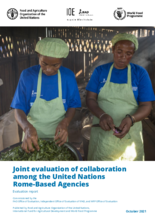Joint Evaluation on the Collaboration among the United Nations Rome-based Agencies