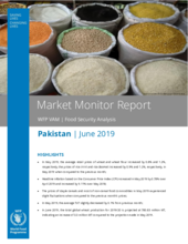 2019 - Pakistan Market Monitor Report