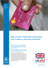 UK-funded multi-purpose cash in Lebanon