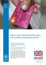 UK-funded multi-purpose cash in Lebanon