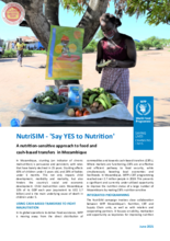 A nutrition-sensitive approach to food and cash-based transfers in Mozambique - 2021