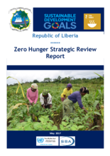 2017 - Strategic Review - Liberia