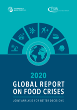 2020 - Global Report on Food Crises