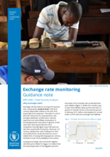 Guidance Note - Exchange Rate Monitoring, July 2019