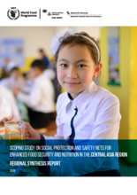 Scoping Study on Social Protection and Safety Nets for Enhanced Food Security and Nutrition in the Central Asia Region