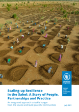 2021: Scaling-up Resilience in the Sahel: A Story of People, Partnerships and Practice