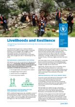 WFP Lebanon - Livelihoods and Resilience - June 2021
