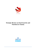 2017 - Strategic Review on Food Security and Nutrition - Tunisia