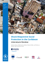 2019 Shock-Responsive Social Protection in the Caribbean - Literature Review