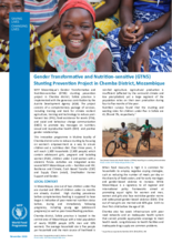 Gender Transformative Nutrition-Sensitive Stunting Prevention Programme in Mozambique - 2019-2021