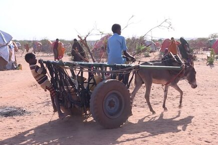 WFP Working to Avert Famine in Somalia as Effects of Drought Intensify (For the Media)