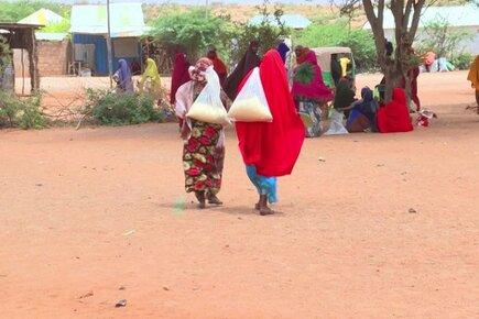 Somalia, Averting Famine