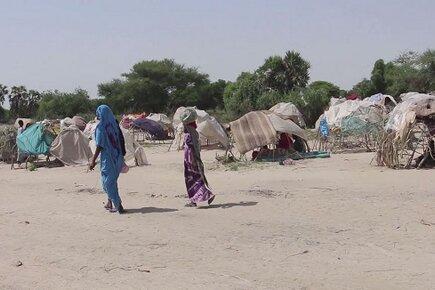 Boko Haram Violence Increasing Regional Humanitarian Crisis (For the Media)