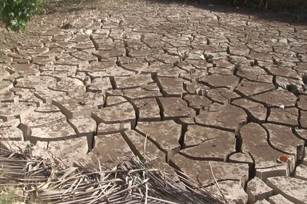 El Niño, Drought Blamed as Severe Food Insecurity Doubles in 6 Months in Haiti (For the Media)