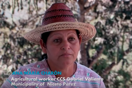 Cuba: WFP and Sustainable Agriculture