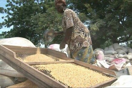 How West African Food Helped Region Overcome Hunger Crisis