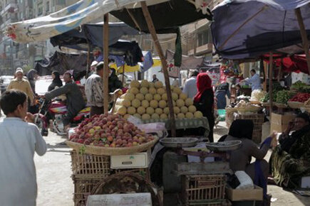Food Security And Nutritional Status In Egypt (For The Media)