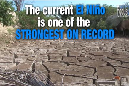 Focus On Zero Hunger: El Niño 2016