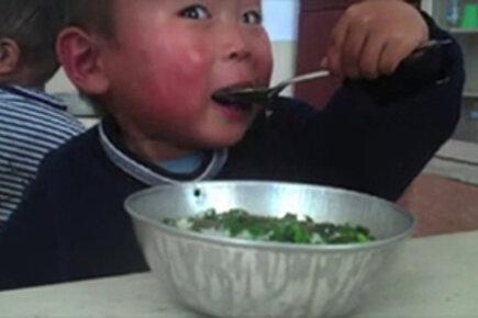 DPR Korea: A Glimpse Beneath the Rice Bowl