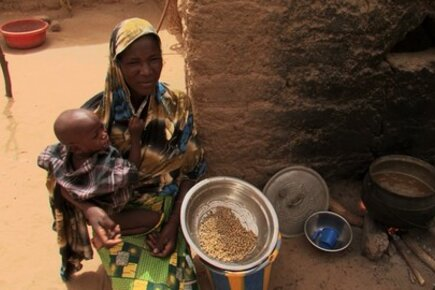 Niger: Getting By On Leaves And Berries