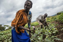 Japan helps strengthen communities' resilience in South Sudan