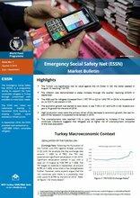 Turkey - Emergency Social Safety Net Market Bulletin