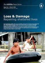 Loss and Damage: Repairing Shattered Lives