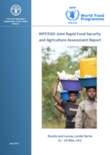 Angola - WFP/FAO Joint Rapid Food Security and Agriculture Assessment Report: Dundo and Lovua, Lunda Norte, June 2017