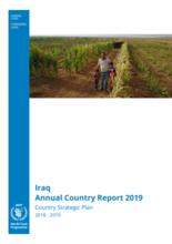 Iraq - Annual Country Report 2018-2019