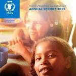 WFP Centre of Excellence Annual Report 2013