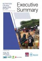 Nutrition Causal Analysis Study