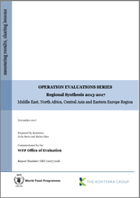 Operation Evaluations Series, Regional Synthesis 2013-2017: Middle East, North Africa, Central Asia and Eastern Europe Region