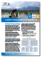 2017 -  C-ADAPT : Climate Resilience for food security