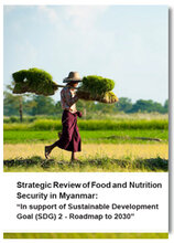 Strategic Review of Food and Nutrition Security in Myanmar: In support of Sustainable Development Goal (SDG) 2 - Roadmap to 2030